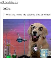 Chemistry Dog Meme - what is the science side of tumblr nerdiness pinterest