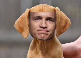 Peyton Manning Face Meme - peyton manning dog picture ebaum s world