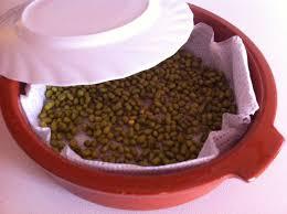 comment cuisiner les pousses de soja bean sprouts maison sprout maison de soja