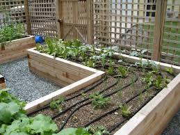 garden design designing drip irrigation system vegetable garden