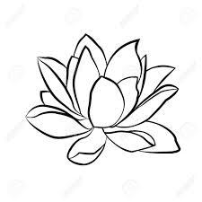 lotus flower line drawing lotus flowers icon the black line drawn