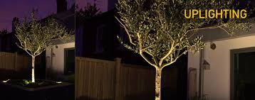Led Landscape Lighting Led Landscape Lights Dekor Lighting