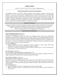 Retail Resume Examples No Experience by Risk Analyst Resume Sample Contegri Com