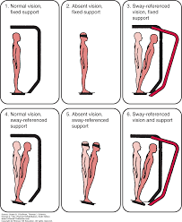 examination of coordination and balance physical rehabilitation