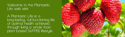 plantastic life u2014 take the whole food plant based journey to long