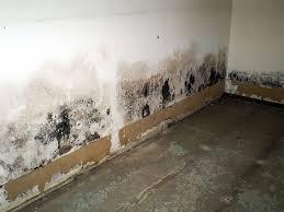drywall basement walls