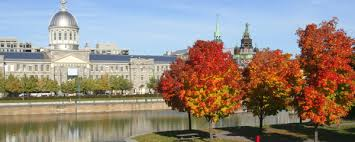bureau d immigration canada a montreal cabinet d avocats à l immigration au canada