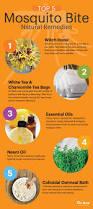best 20 mosquito bite treatment ideas on pinterest mosquito