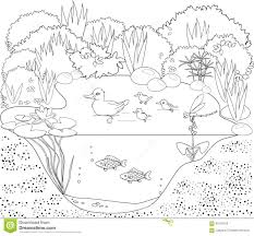 coloring duck pond stock vector image 61553156
