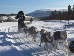 Teh Yakon heed yukon s call of the even in the dead of winter