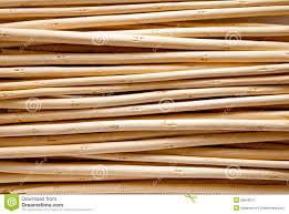 sticks wood wood sticks stock image image of twigs warm withered 26648275