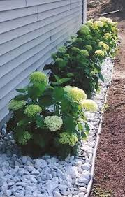 Front Landscaping Ideas Curb Appeal 20 Modest Yet Gorgeous Front Yards Yard Landscaping