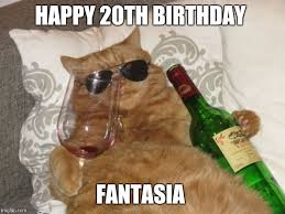 wine cat birthday memes imgflip
