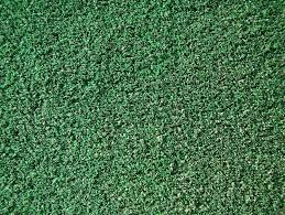 Astro Turf Astro Turf Bing Billeder Palads Community Center And Theater