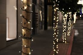 free stock photo of christmas lights on tree trunks on street