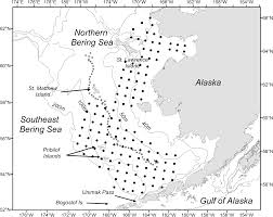 return of warm conditions in the southeastern bering sea