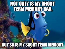 Nemo Meme - image tagged in funny memes dory from finding nemo i am dory