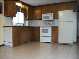 painting kitchen cabinets in mobile home kitchen