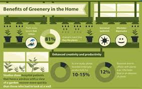 benefits of houseplants houseplants even better for us than we thought apartment therapy