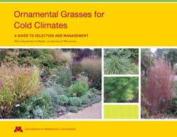 ornamental grasses for cold climates yard and garden