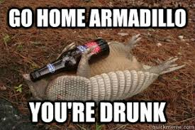 Armadillo Meme - go home armadillo you re drunk drunk armadillo quickmeme