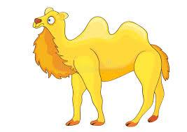 Hump Day Camel Meme - funny camel cartoon to print animated camel free printable