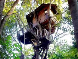 best tree houses best price on rabeang pasak tree house resort in chiang mai reviews