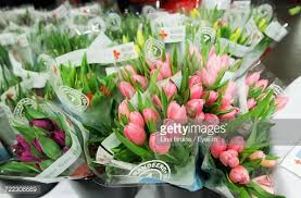 Tulip Bouquets Closeup Of Tulip Bouquets For Sale At Flower Market Stock Photo