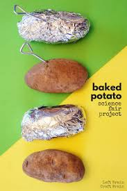 what u0027s the fastest way to bake a potato baked potato science fair