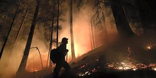 Wildfire Test Questions by A Vital Guide To Current Wildfire Conditions Outdoor Project