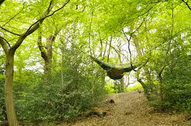 wanna see something brilliant take a look at this hammock tent