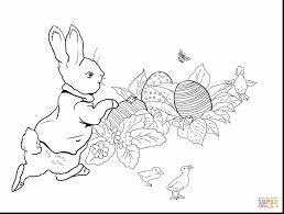 peter rabbit coloring pages archives best in glum me