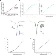 frontiers computational modeling of single neuron extracellular