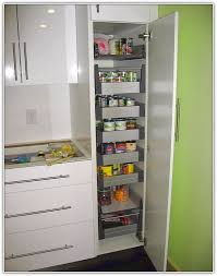 kitchen pantry cabinet home design ideas