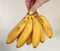 tiny banana evanna lynch on twitter these tiny bananas make me want to have 7
