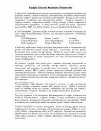 resume summary statement exles finance resumes alluring profile summary of resume on free exle and writing