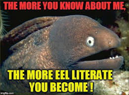 The More You Know Meme - the more you know about me the more eel literate you become