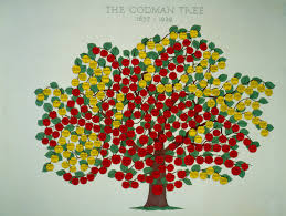 this family tree starts with robert codman who married in 1637 it