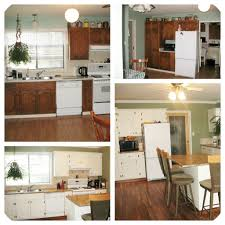 Kitchen Cabinets Painted Before And After Painting Oak Cabinets White Before And After 95 With Painting Oak