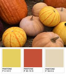 Beautiful Color Palettes by The Perfect Tool For Capturing Color Inspiration X Rite Blog