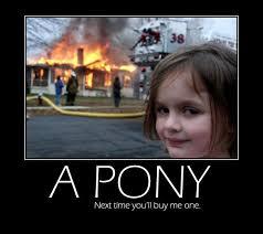 Funny Pony Memes - kid want s a pony mad cow club meme