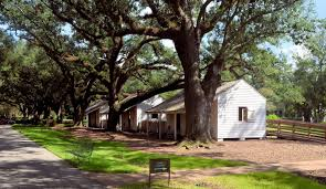 room with no view oak alley plantation an iconic view part two