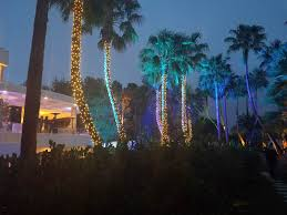 vegas event lights lighting service detail