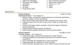 Professional Summary Resume Examples For Software Developer by Professional Summary Examples For Resume The Best Resume