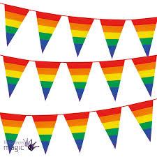 Flag Triangle Rainbow Pride Flag 8m Plastic Pub Street Triangle Bunting