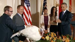 thanksgiving white house thanksgiving turkey pardon images reverse search