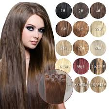 hair clip rambut clip in human hair extensions color hair