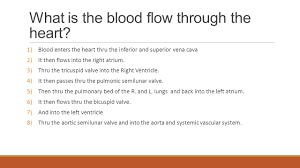 Human Anatomy And Physiology Final Exam Rt 30 Final Exam Review Ppt Download