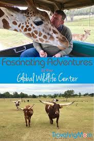 Alabama wildlife tours images Global wildlife center giraffe habitat travelingmom png