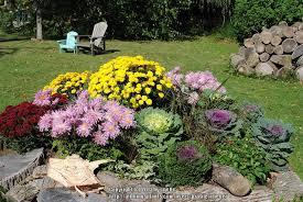 all things gardening forum is it possible to grow in straight